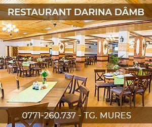 Restaurant Darina Dâmb