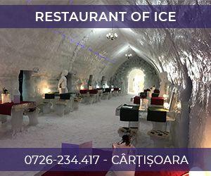 Restaurant Of Ice
