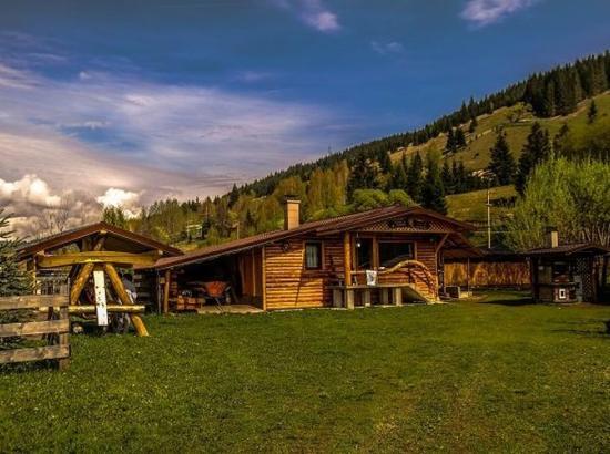 Cabana cu Veverite