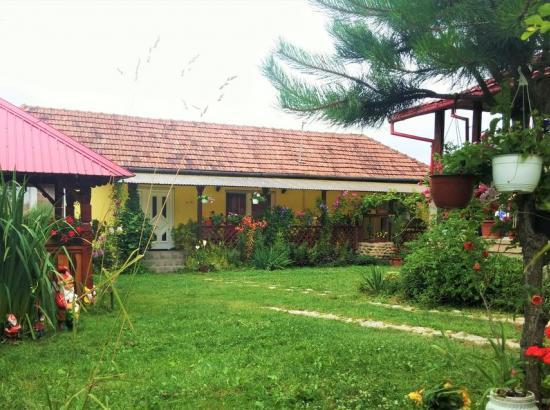 Casa Otilia