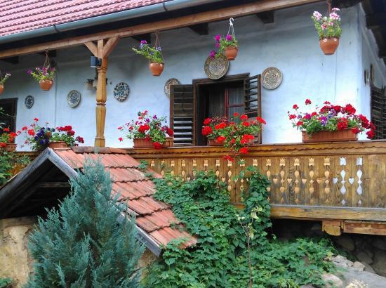 Casa Dindi