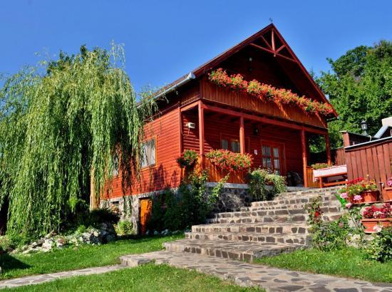 Casa Zsuzsi